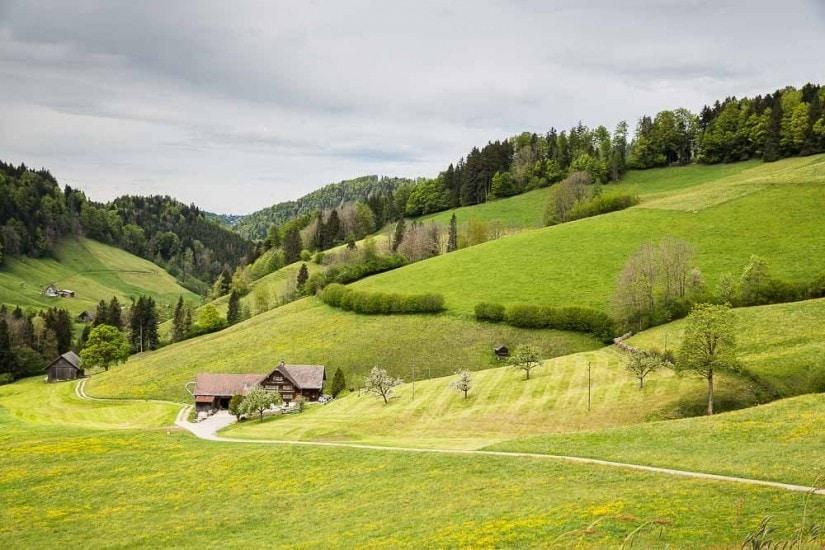 Bauernhaus mit Lebhag.