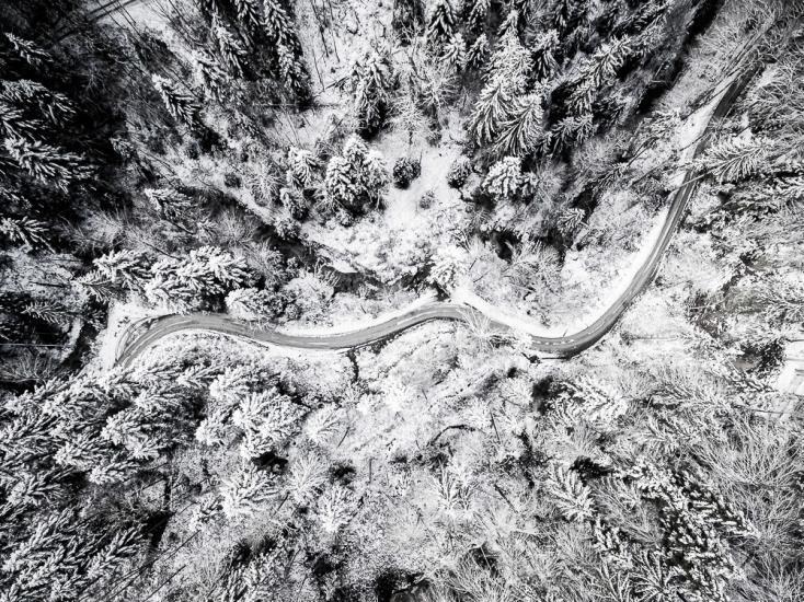 Drohnenaufnahme von einem verschneiten Wald